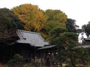 清水公園 (11)