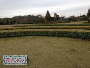 清水公園 (17)