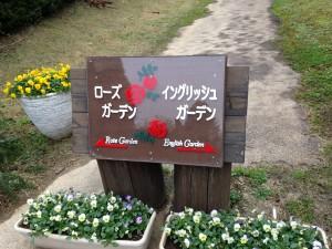 清水公園 (20)