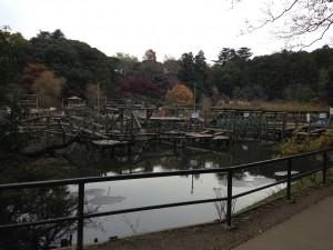 清水公園 (59)