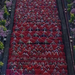 勝浦ビッグひな祭り (17)